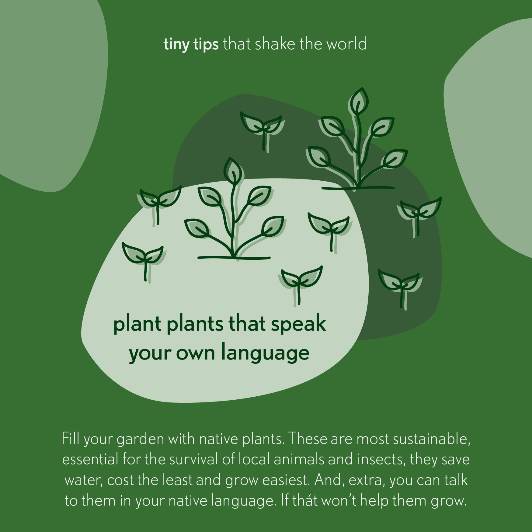 20190414 Plant plants that speak your own language