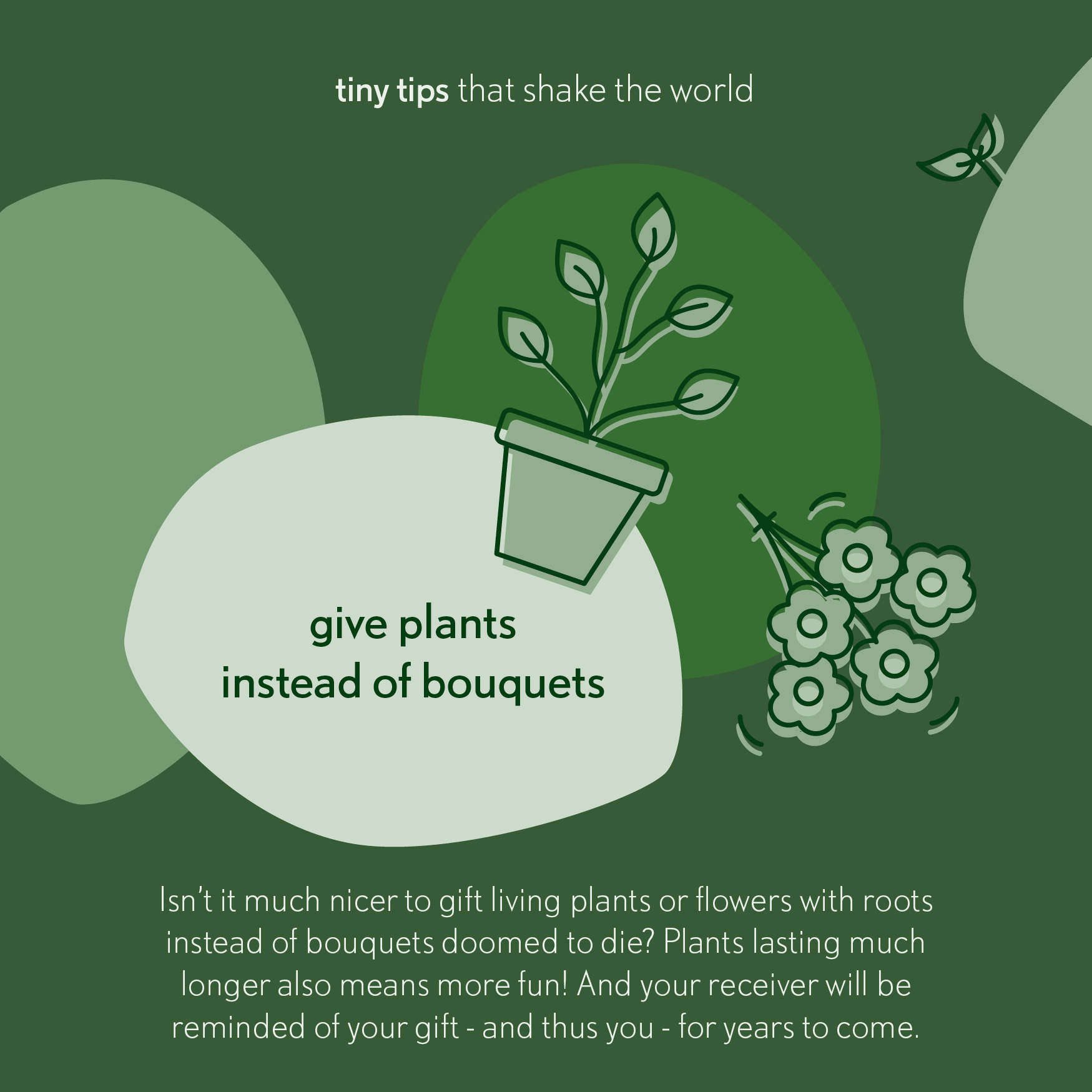 Tiny tips that shake the world give plants instead of bouquets