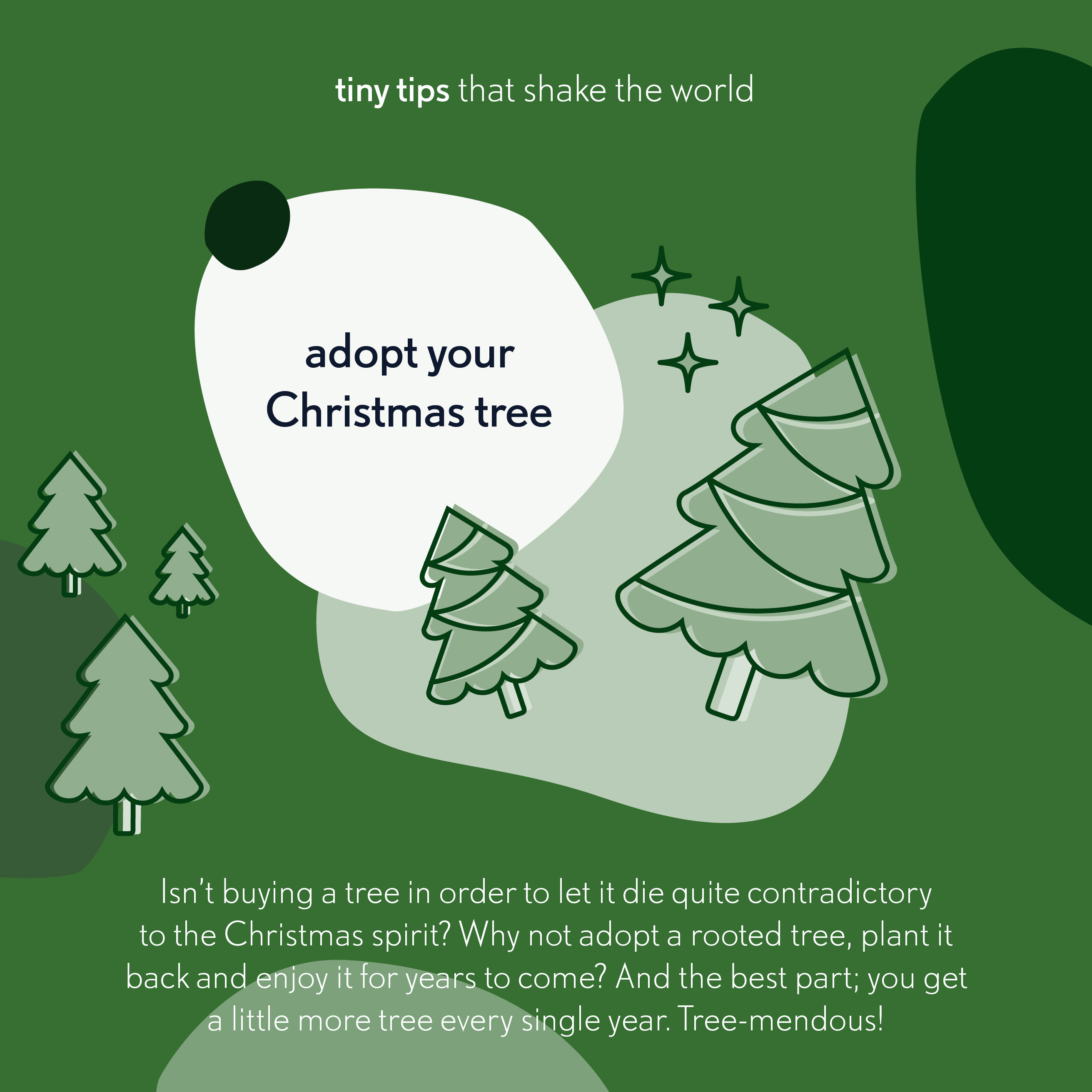 20191204 Adopt your Christmas Tree Tiny tips that shake the world