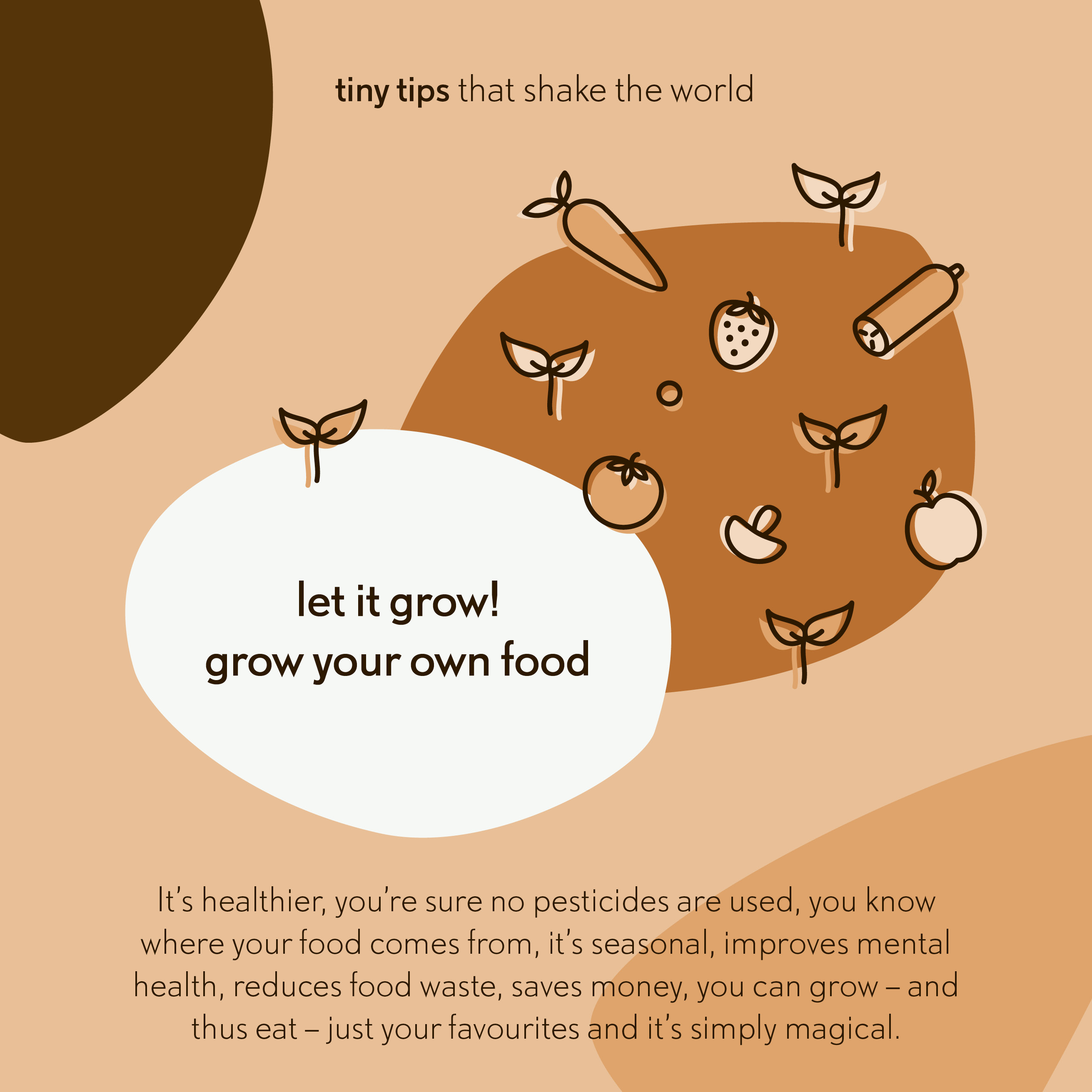 Let it grow! Grow your own food - Tiny tips that shake the world